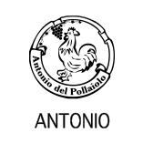 アントニオデルポライオーロ